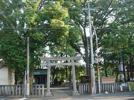 小杉神社の南鳥居