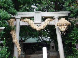 奥澤神社の鳥居