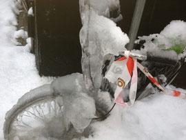 凍結放置自転車