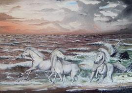 Tre cavalli bianchi e il mare in tempesta