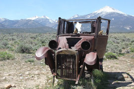 Foto: Verirrt im Grat Basin NP