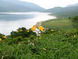 神秘の湖 野反湖