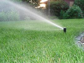 bewässerungssysteme richtig nutzen