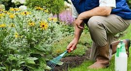 Gartenpflege - Paket medium