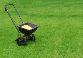 Rasenpflege im Frühjahr - Frühjahrspflege für den Rasen