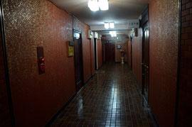 伽草子廊下
