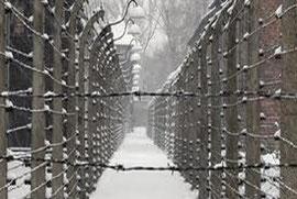 Sachsenhausen in Winter