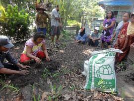 Workshop in organischer Landwirtschaft © YUM