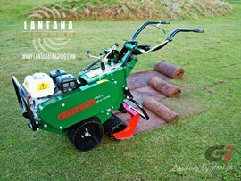 Cortatepes Groundsman TMC48