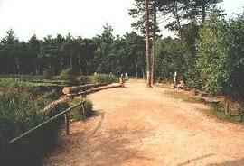 Rad & Reitwege in Berensch