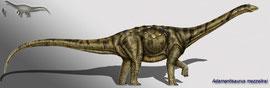 Bild eines Adamantisaurus