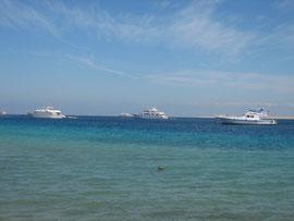 chambre hôte hurghada activités loisirs excursions désert mer rouge Egypte