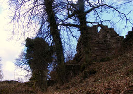 Aufgang zur Burgruine Eberbach