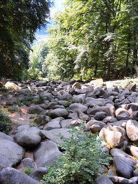 Das Felsenmeer