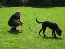 Normen lockt einen Hund, dieser wendet sich aber ab und läuft zurück zur Besitzerin