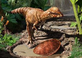 Recreación artística del dinosaurio Acrotholus audeti / Julius Csotonyi, Nature