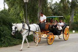 Paseo a caballo en el parque /(CC)Barcex