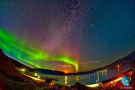 Aurora Boreal observada desde el sur de Groenlandia. ©Imagen: D. Padrón. (en SINC)
