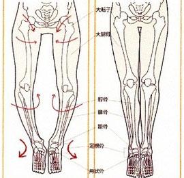 がに股O脚整体