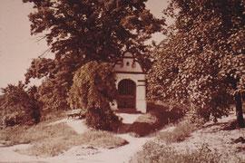 Helljerhaisje Gau-Algesheim