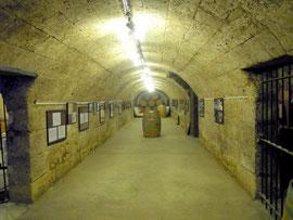 Musée du vin det du négoce à Bordeaux