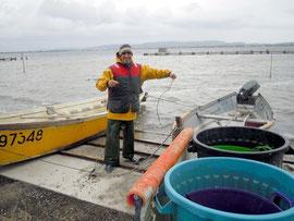 Un des derniers pêcheurs d'anguilles à l'étang de Bages (Aude)