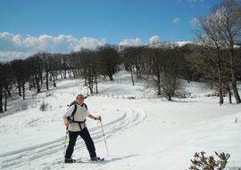 Ingrid en raquettes à neige à 1200m d'altitude près du col d'Ibaneta / Pays Basque
