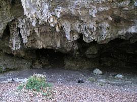 Höhle bei Allmendingen