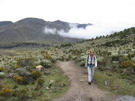 In the Venezuelan Andes
