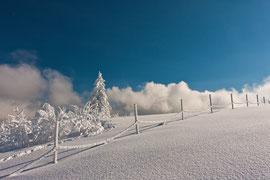 Schwarzwaldbilder im Winter