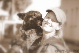 výcvik a výchova psů