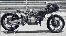 la Tecfar TF1 motor mototrans 900cc