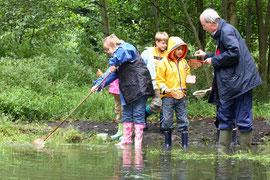 Wir erforschen Teich und Tümpel