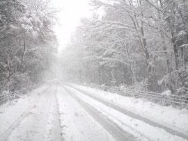 15日の積雪