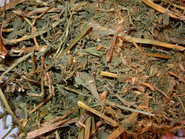 Alfalfa verde y seca