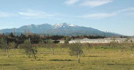 Vue sur le Canigou (massif du Puigmal en arrière-plan)