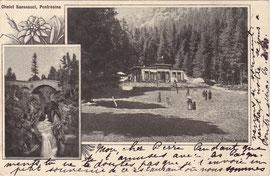 209-003 Verlag: Chalet Sanssouci, Pontresina. Karte gelaufen 19.8.1901