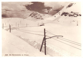 Photo Alb. Steiner, St. Moritz. Photodruck u. Vertrieb Wilh. Pleyer, Zürich