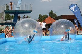 Groß und Klein tummelte sich bei der ersten Aqua-Zorbing-Challenge in der Badearena Krems. Foto: Stadt Krems.