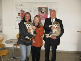 Andrea Specht, Nina Zinn-Zinnenburg und Bürgermeister Dr. Reinhard Resch (von links) mit zwei Malamut-Welpen, den jüngsten Lieblingen im Kremser Tierheim.Foto: Stadt Krems