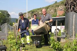 Bürgermeister Dr. Reinhard Resch als prominenter Unterstützer der Stadgärtner Mario Streibel und Andrea Geyer beim Kreisverkehr Förthof. Foto: Stadt Krems