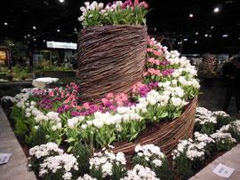 Boston Flower Show 2016 Exhibit of Tulips