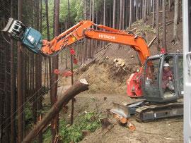 利用間伐の作業状況