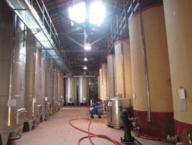 セメントタンクは、かつてマルサラを作っていた前ワイナリーのものを引き継いでいます。