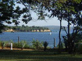 Blick auf Toten Island