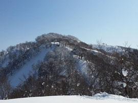 ボサボサ山の右奥がピーク。