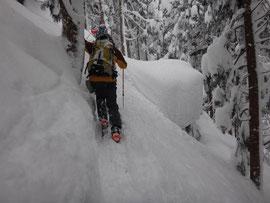最初は杉林の急勾配を登る。雪を切り崩して進むハードなラッセル。