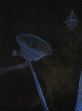 coincidence / 2012 / oil on canvas / 50 x 36 cm