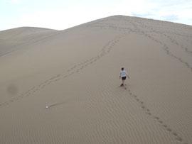 Bergauf in den Dünen