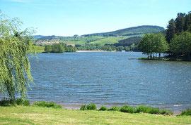 Le lac des sapins à Cublize